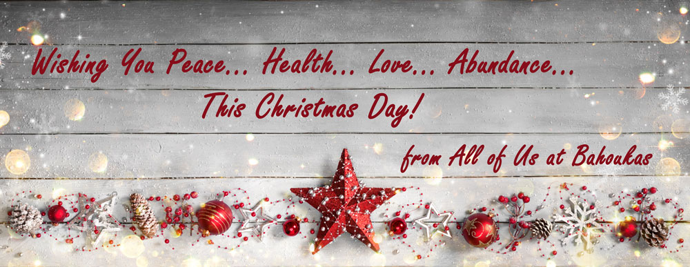 Merry Christmas from all of us at Bahoukas