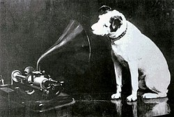 Nipper - the RCA Victor dog