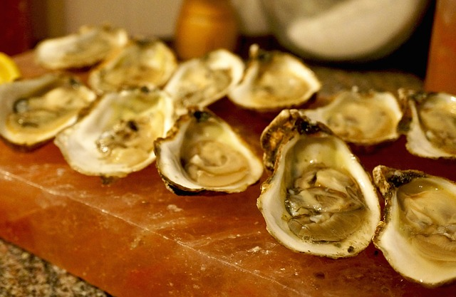 Oysters from the Chesapeake - YUM